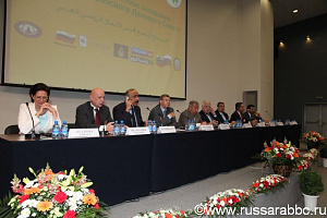The IX JOINT MEETING OF THE RUSSIAN-ARAB BUSINESS COUNCIL