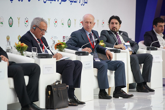 "PANEL SESSION: ""RUSSIAN-ARABIAN COOPERATION IN THE AGRICULTURAL SPHERE. HALAL PRODUCTS»"